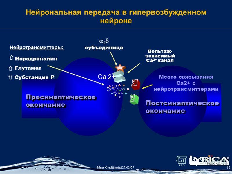 Pfizer Confidential 27/02/0712 Нейрональная передача в гипервозбужденном нейроне ПресинаптическоеокончаниеПресинаптическоеокончание Вольтаж- зависимый Ca 2+ канал субъединица Нейротрансмиттеры: Норадреналин Глутамат Субстанция P Постсинаптическое око