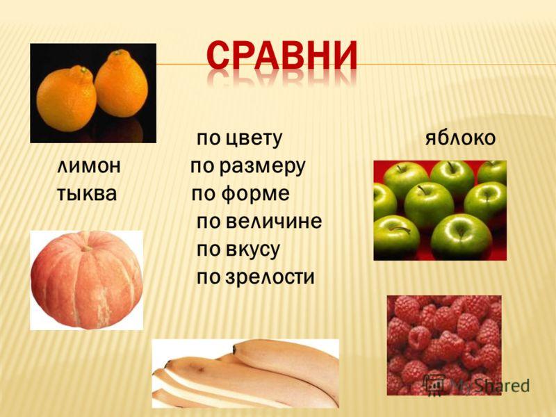 по цвету яблоко лимон по размеру тыква по форме по величине по вкусу малина по зрелости бананы