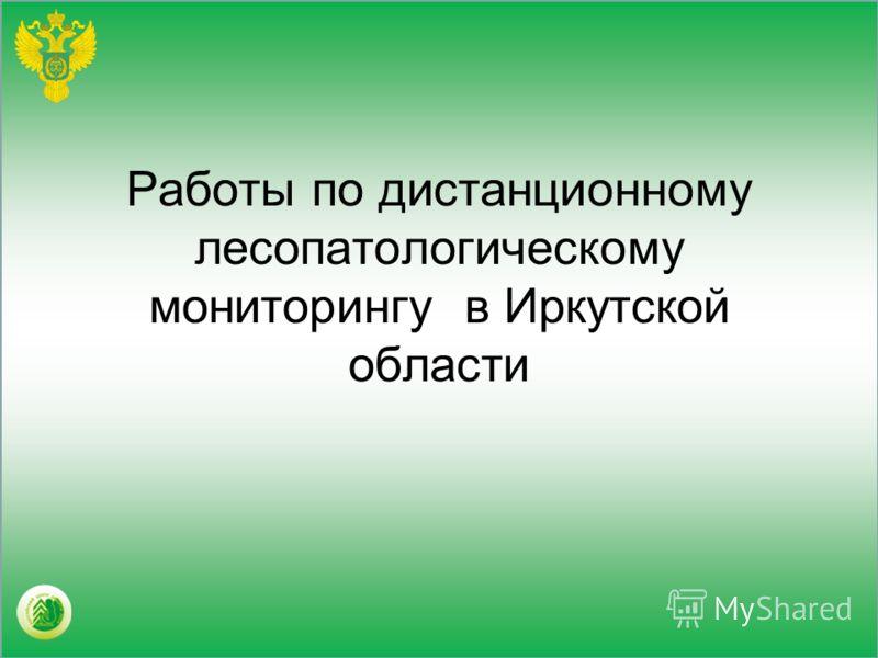Работы по дистанционному лесопатологическому мониторингу в Иркутской области
