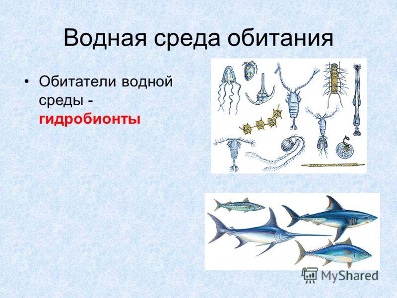 Водная среда обитания Обитатели водной среды - гидробионты