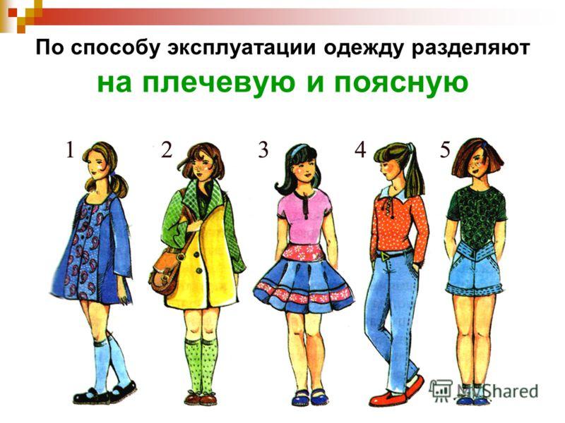 Вид Одежды