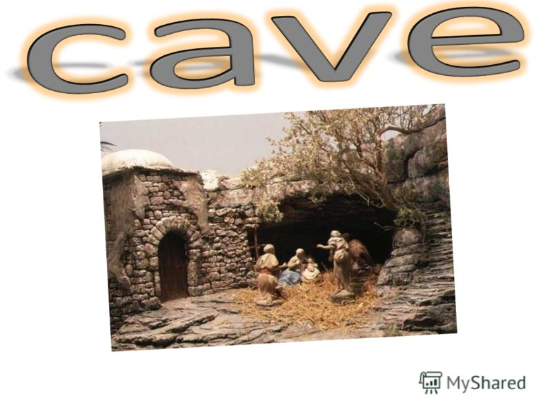 Where Americans go on Christmas? Americans traveling to Israel to bow to the cave in which Jesus Christ was born.