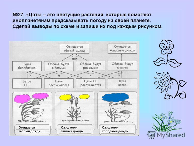 Ожидается теплый дождь Ожидается холодный дождь 27. «Цаты – это цветущие растения, которые помогают инопланетянам предсказывать погоду на своей планете. Сделай выводы по схеме и запиши их под каждым рисунком.