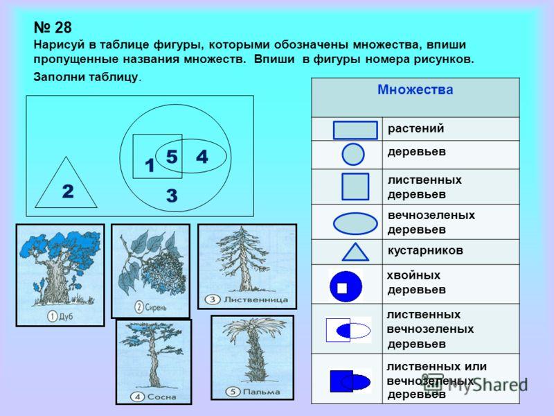 1 2 5 3 4 Множества растений деревьев лиственных деревьев вечнозеленых деревьев кустарников деревьев хвойных лиственных вечнозеленых лиственных или вечнозеленых 28 Нарисуй в таблице фигуры, которыми обозначены множества, впиши пропущенные названия мн