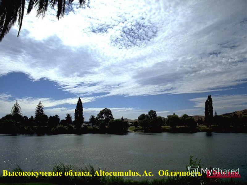 Высококучевые облака, Altocumulus, Ac. Облачность 8 баллов.8 баллов.