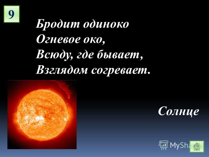 9 Бродит одиноко Огневое око, Всюду, где бывает, Взглядом согревает. Солнце
