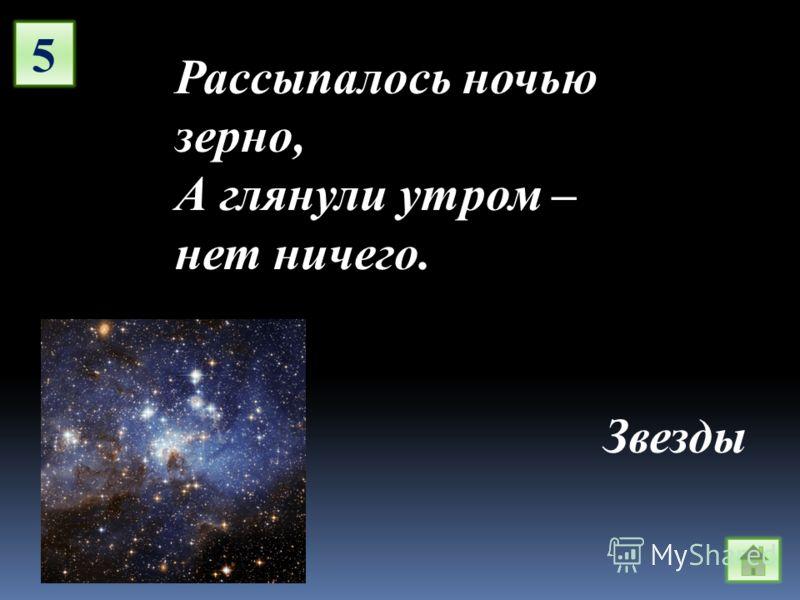 5 Рассыпалось ночью зерно, А глянули утром – нет ничего. Звезды