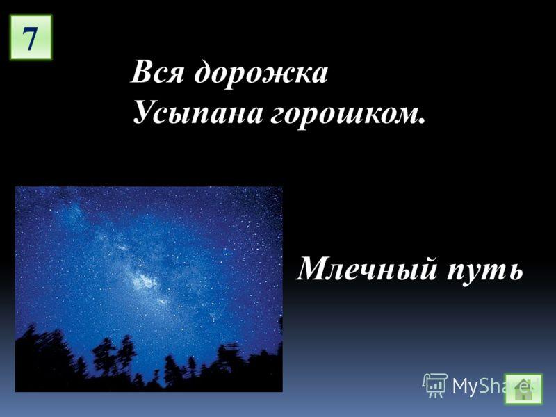 7 Вся дорожка Усыпана горошком. Млечный путь