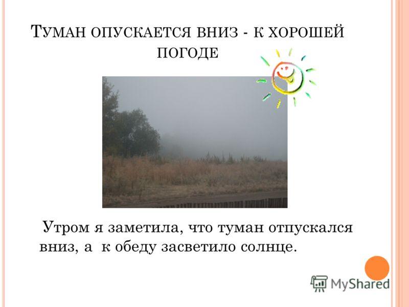 Т УМАН ОПУСКАЕТСЯ ВНИЗ - К ХОРОШЕЙ ПОГОДЕ Утром я заметила, что туман отпускался вниз, а к обеду засветило солнце.
