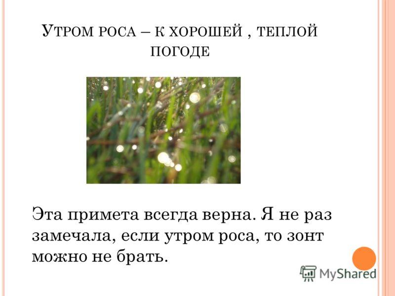 У ТРОМ РОСА – К ХОРОШЕЙ, ТЕПЛОЙ ПОГОДЕ Эта примета всегда верна. Я не раз замечала, если утром роса, то зонт можно не брать.