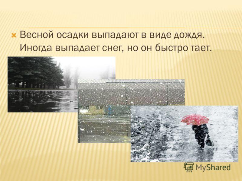 Весной осадки выпадают в виде дождя. Иногда выпадает снег, но он быстро тает.