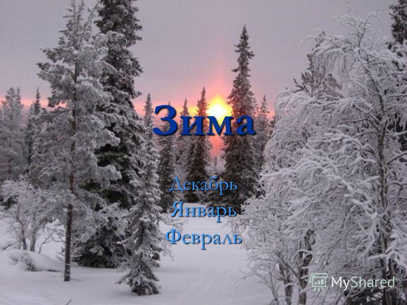 Зима ДекабрьЯнварьФевраль