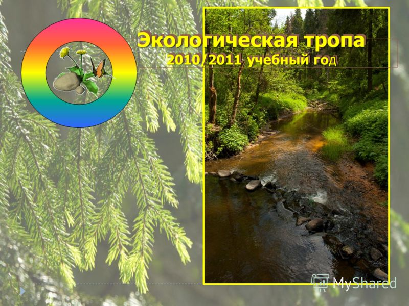 Экологическая тропа 2010/2011 учебный год