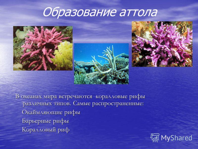 Образование аттола В океанах мира встречаются коралловые рифы различных типов. Самые распространенные: Окаймляющие рифы Барьерные рифы Коралловый риф