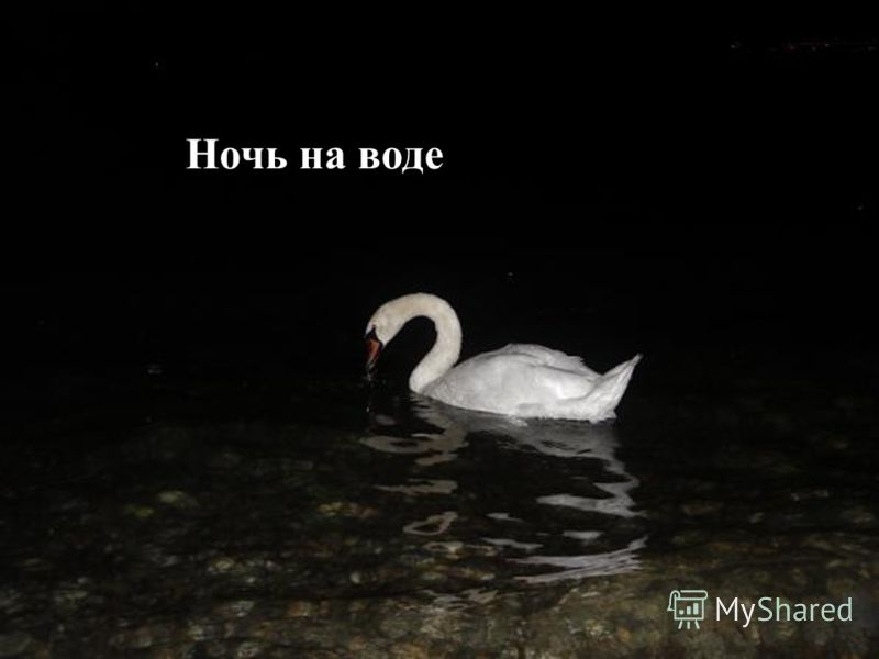 Ночь на воде