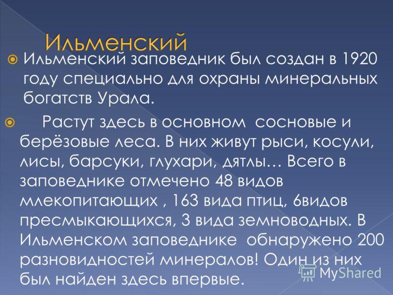 Ильменский заповедник был создан в 1920 году специально для охраны минеральных богатств Урала. Растут здесь в основном сосновые и берёзовые леса. В них живут рыси, косули, лисы, барсуки, глухари, дятлы… Всего в заповеднике отмечено 48 видов млекопита