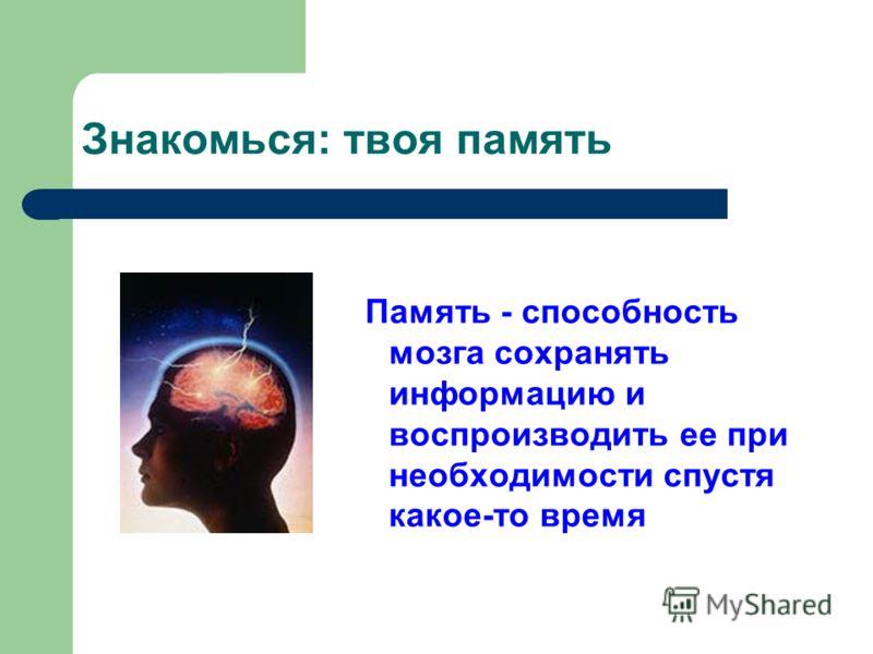 Память - способность мозга сохранять информацию и воспроизводить ее при необходимости спустя какое-то время