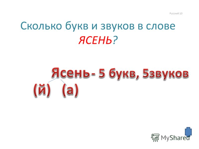 Русский 10 Сколько букв и звуков в слове ЯСЕНЬ?