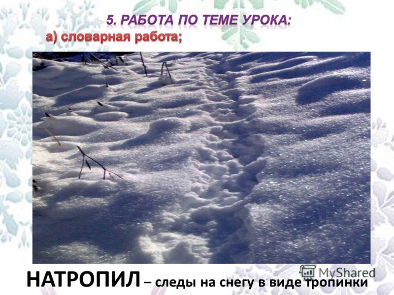 НАТРОПИЛ – следы на снегу в виде тропинки