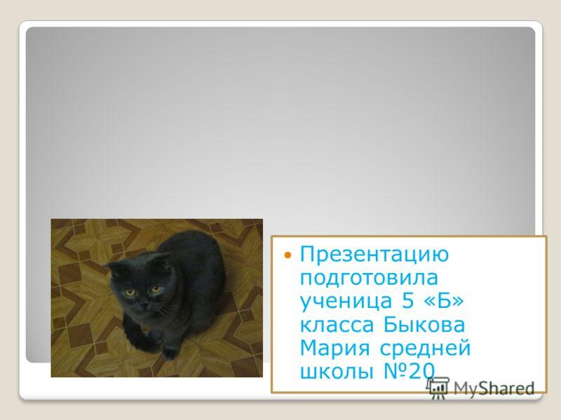 Презентацию подготовила ученица 5 «Б» класса Быкова Мария средней школы 20