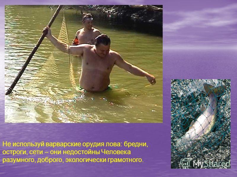 Не используй варварские орудия лова: бредни, остроги, сети – они недостойны Человека разумного, доброго, экологически грамотного.