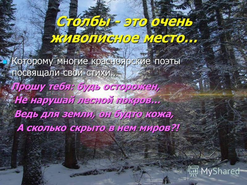 Столбы - это очень живописное место… Которому многие красноярские поэтыпосвящали свои стихи… Прошу тебя: будь осторожен, Не нарушай лесной покров… Ведь для земли, он будто кожа, А сколько скрыто в нем миров?!