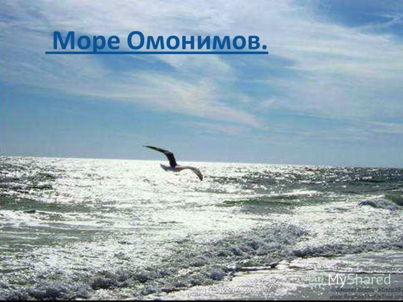 Море Омонимов.