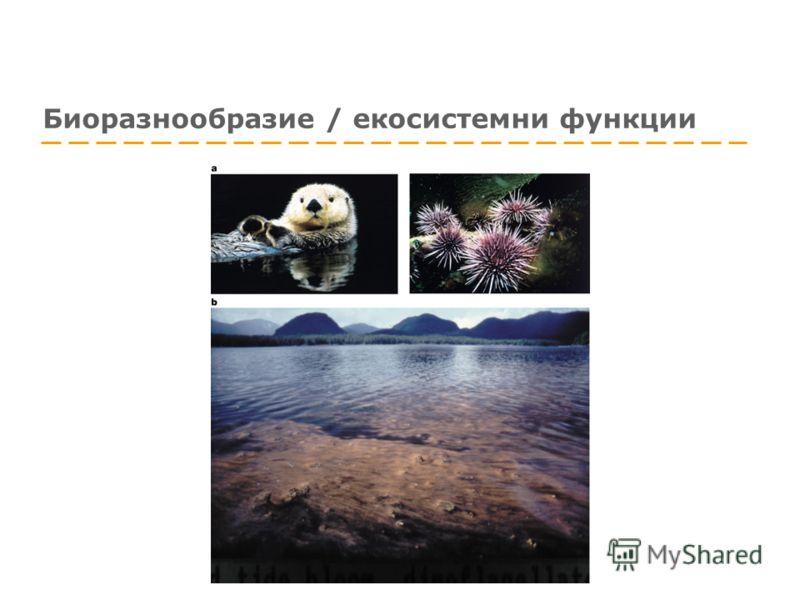 Биоразнообразие / екосистемни функции