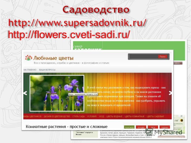 http://flowers.cveti-sadi.ru/