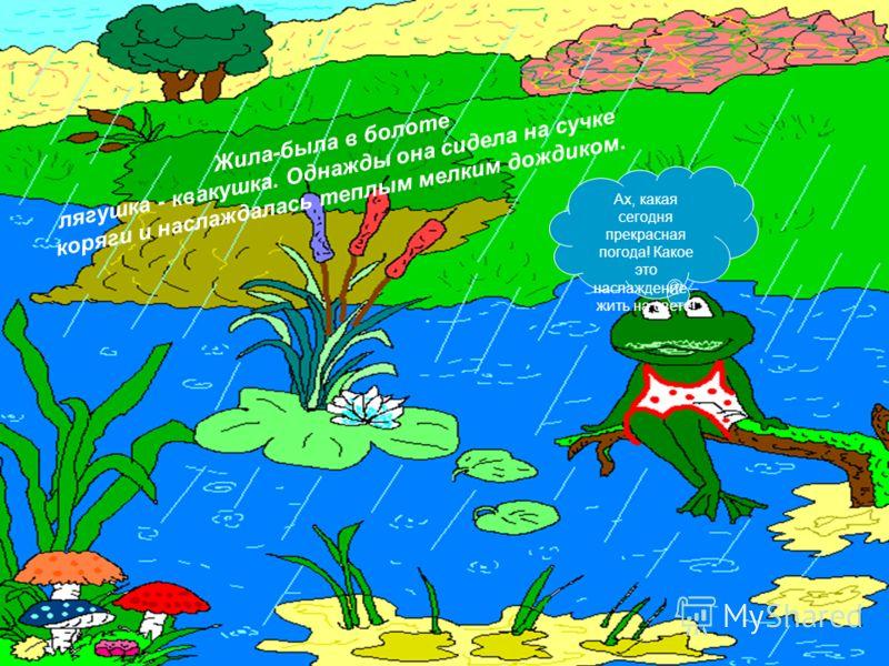 Жила-была в болоте лягушка - квакушка. Однажды она сидела на сучке коряги и наслаждалась теплым мелким дождиком. Ах, какая сегодня прекрасная погода! Какое это наслаждение – жить на свете!