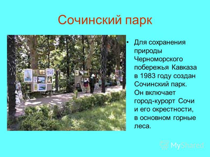 Сочинский парк Для сохранения природы Черноморского побережья Кавказа в 1983 году создан Сочинский парк. Он включает город-курорт Сочи и его окрестности, в основном горные леса.