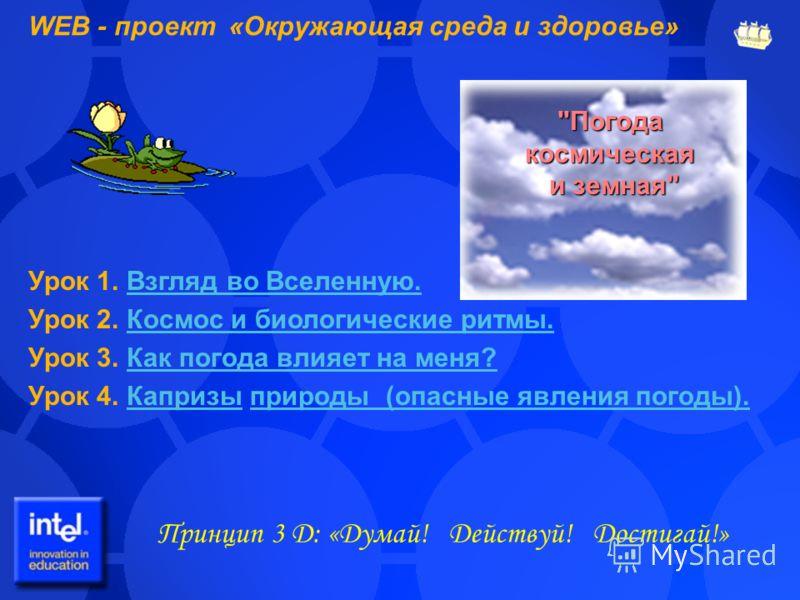 WEB - проект «Окружающая среда и здоровье» Принцип 3 Д: «Думай! Действуй! Достигай!»