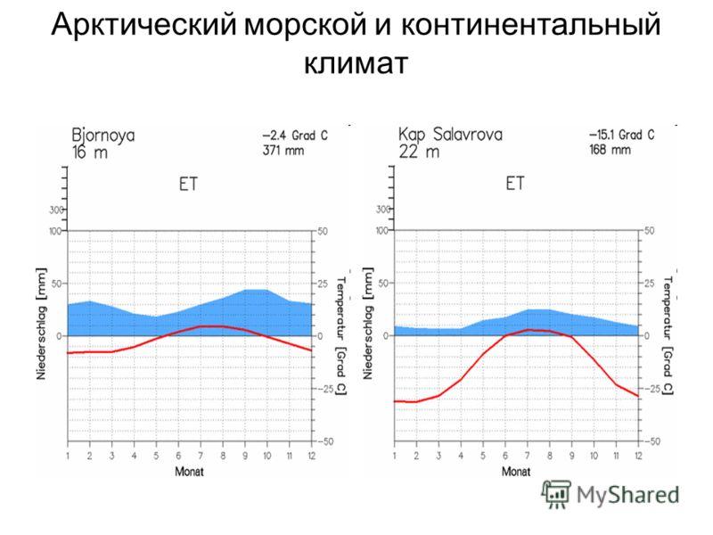Арктический морской и континентальный климат