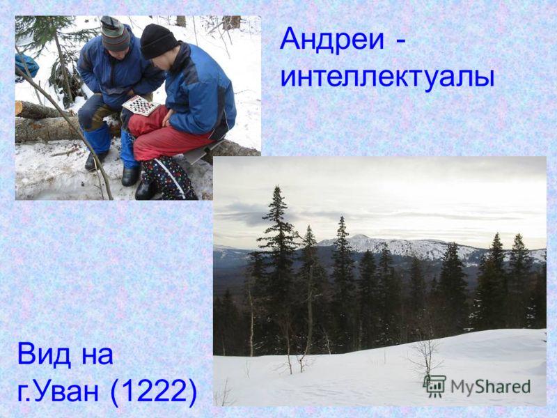 Наши «Зимы»