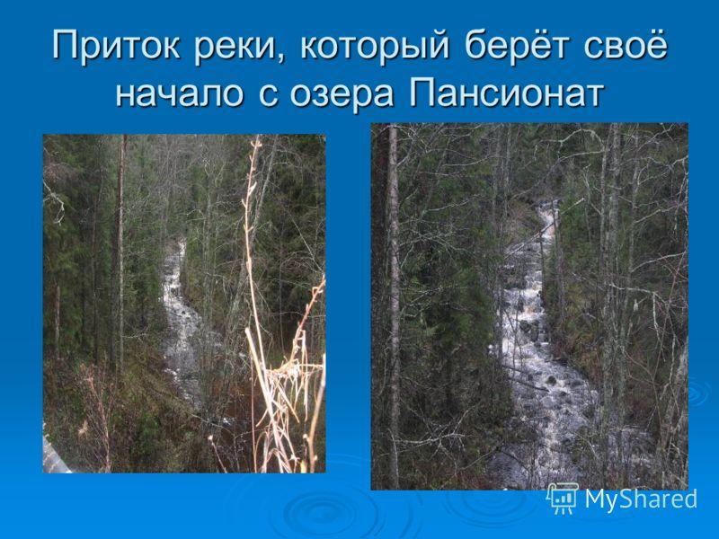 Приток реки, который берёт своёначало с озера Пансионат
