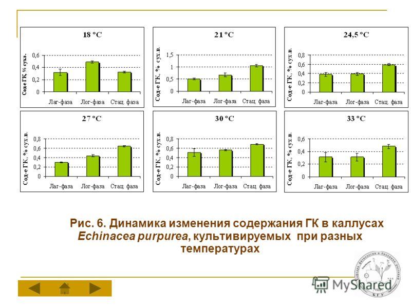Рис. 6. Динамика изменения содержания ГК в каллусах Echinacea purpurea, культивируемых при разных температурах