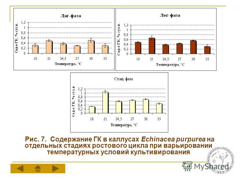Рис. 7. Содержание ГК в каллусах Echinacea purpurea на отдельных стадиях ростового цикла при варьировании температурных условий культивирования