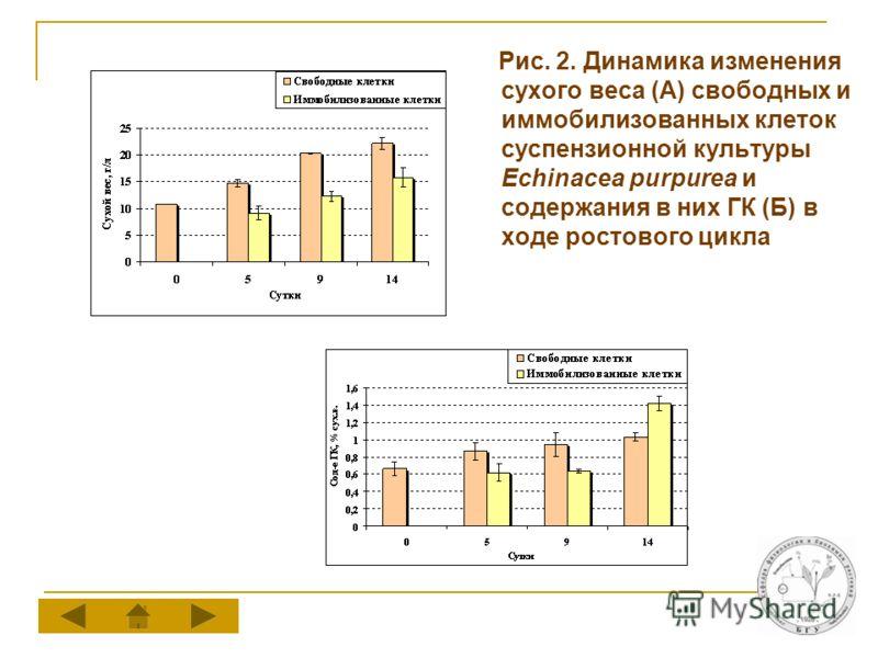 Рис. 2. Динамика изменения сухого веса (А) свободных и иммобилизованных клеток суспензионной культуры Echinacea purpurea и содержания в них ГК (Б) в ходе ростового цикла