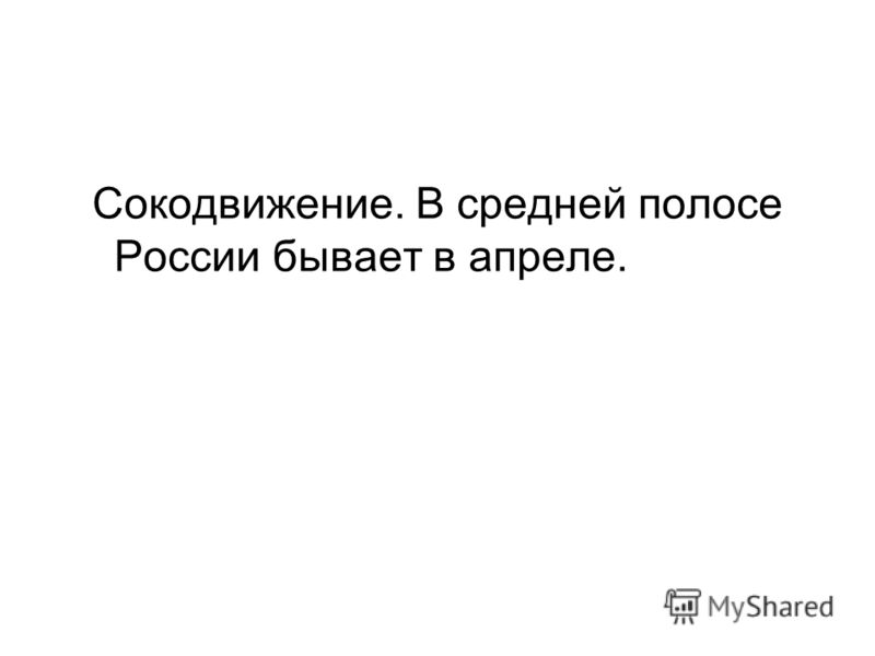 Сокодвижение. В средней полосе России бывает в апреле.