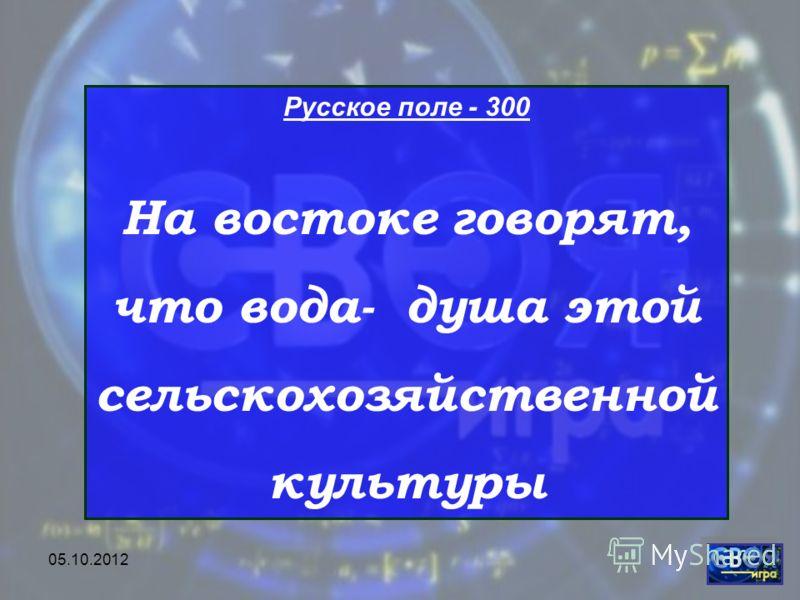 28.07.2012 Русское поле - 300 На востоке говорят, что вода- душа этой сельскохозяйственной культуры