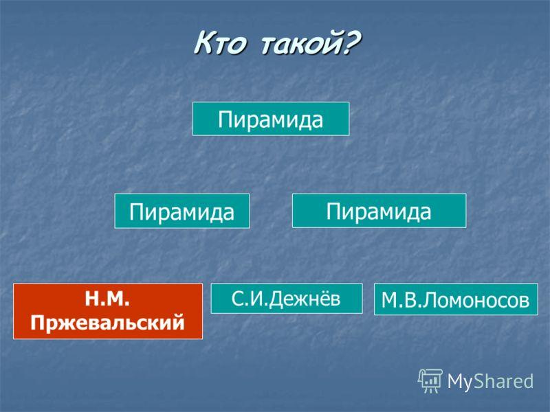 Пирамида Н.М. Пржевальский С.И.Дежнёв М.В.Ломоносов Кто такой?