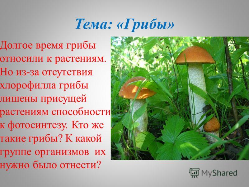 Тема: «Грибы» Долгое время грибы относили к растениям. Но из-за отсутствия хлорофилла грибы лишены присущей растениям способности к фотосинтезу. Кто же такие грибы? К какой группе организмов их нужно было отнести?