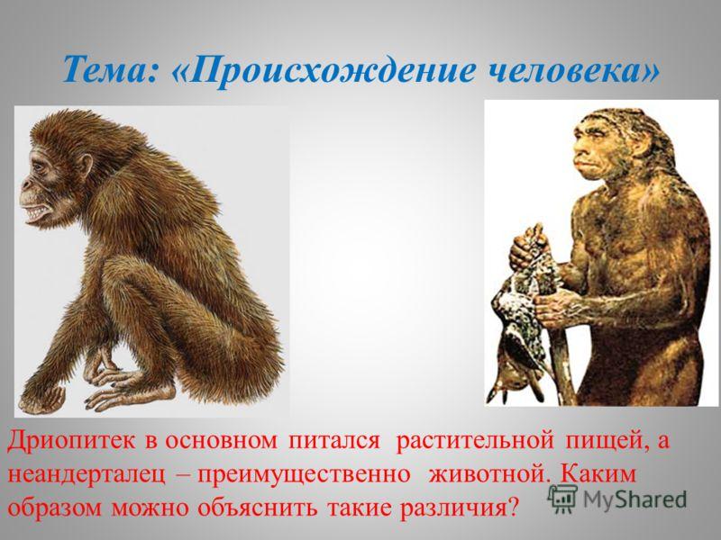 Тема: «Происхождение человека» Дриопитек в основном питался растительной пищей, а неандерталец – преимущественно животной. Каким образом можно объяснить такие различия?