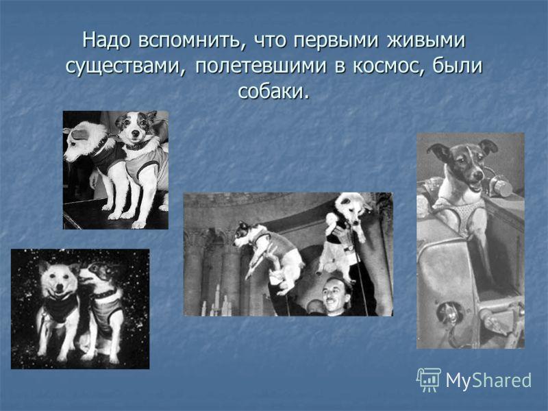 Надо вспомнить, что первыми живыми существами, полетевшими в космос, были собаки.