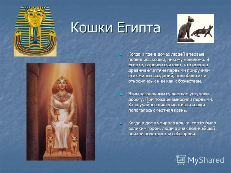 Кошки Египта Когда и где в домах людей впервые появились кошки, никому неведомо. В Египте, впрочем считают, что именно древние египтяне первыми приручили этих милых созданий, полюбили их и относились к ним как к божествам. Этим загадочным существам у