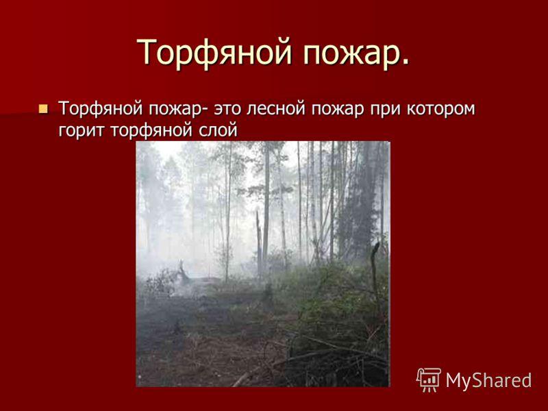 Торфяной пожар. Торфяной пожар- это лесной пожар при котором горит торфяной слой