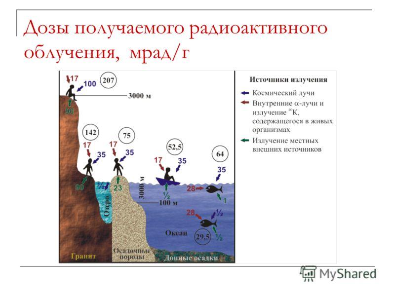 Дозы получаемого радиоактивного облучения, мрад/г