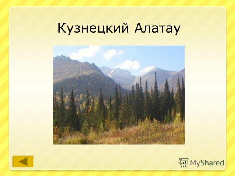 Назовите высокие горы на территории Кемеровской области. ответ