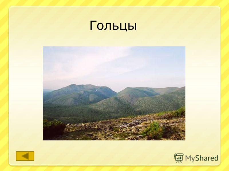 Так называют вершины гор не покрытые кустарниковой или древесной растительностью. ответ