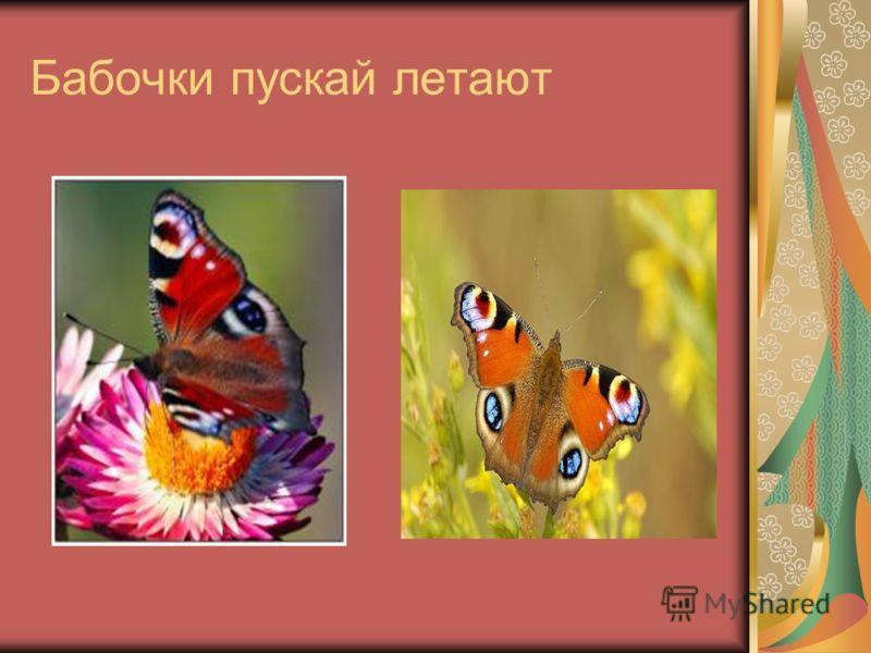 Бабочки пускай летают